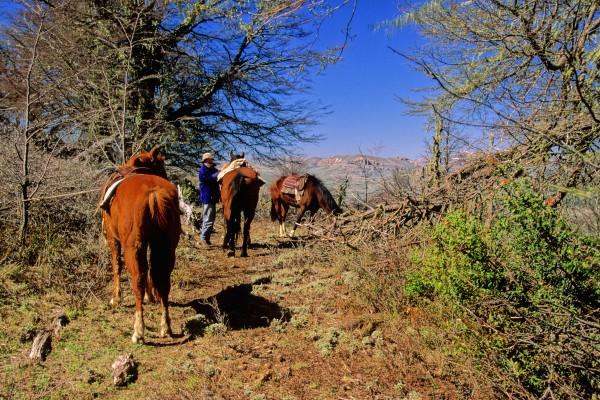 Andes_Bariloche (3)