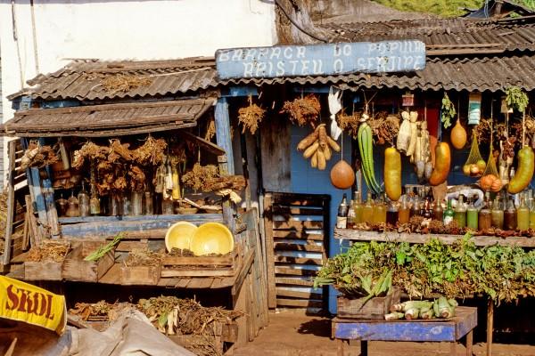 Bahia (7)