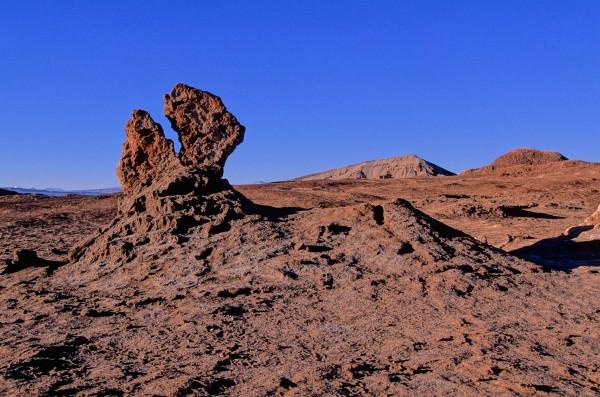 Désert d'Atacama (3)