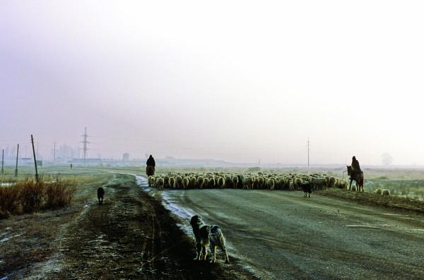 Kazakhstan_Jetisu16