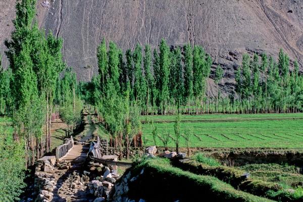 Vallée de Ghilzar (3)